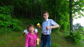 Children have fun in the forest on the shore of a large lake. The children ate fruit. They have a good mood. They are having fun. Evening in the summer forest stock footage