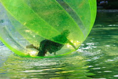 Children have fun inside plastic balloons on the water. Royalty Free Stock Photography