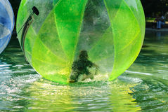 Children have fun inside plastic balloons on the water. Stock Image