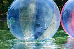 Children have fun inside plastic balloons on the water. The Magic of Childhood Royalty Free Stock Images