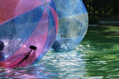 Children have fun inside plastic balloons on the water. The Magic of Childhood Royalty Free Stock Photography