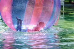 Children have fun inside plastic balloons on the water. Stock Images