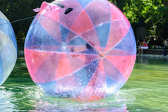 Children have fun inside plastic balloons on the water. Stock Photos