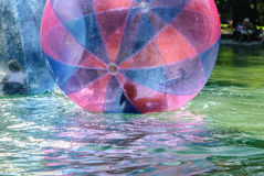 Children have fun inside plastic balloons on the water. Stock Photo