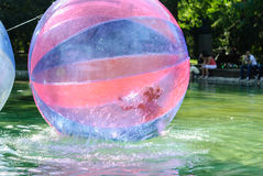 Children have fun inside plastic balloons on the water. Royalty Free Stock Images