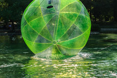 Children have fun inside plastic balloons on the water. Royalty Free Stock Photos