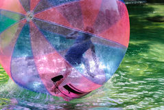 Children have fun inside plastic balloons on the water. The Magic of Childhood Stock Photos