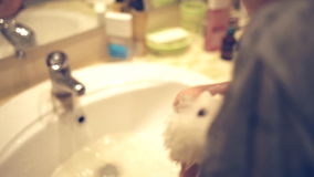 Children have fun washing guinea pig in bathroom stock footage