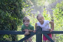 Children having fun climbing on a gate in the woods Stock Image