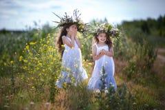 Children are having fun in the field Stock Photo