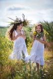 Children are having fun in the field Stock Images