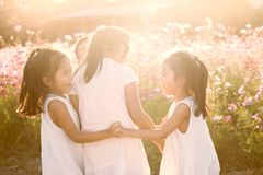 Children having fun to play together in the cosmos flower field Royalty Free Stock Images