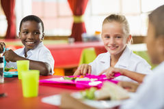 Children having lunch during break time in school cafeteria. Happy children having lunch during break time in school cafeteria stock image