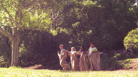Children having a sack race in park stock video