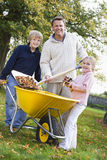 Children helping father to collect autumn leaves. In barrow Royalty Free Stock Photos