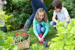 Children helping their parents gardening. Kids gardening at home together in springtime Royalty Free Stock Images