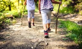 Children hiking in mountains or forest with sport hiking shoes. Stock Image