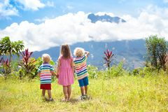 Children hiking in mountains and jungle. Royalty Free Stock Image