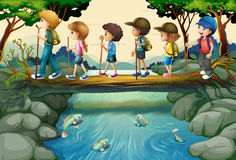 Children hiking in the woods. Illustration Stock Photos