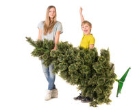 Children are holding a Christmas tree Stock Photos