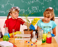 Children holding flask and plant in biology class. Stock Photo