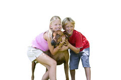 Children hugging dog, cut out Stock Photo