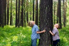 Children hugging tree Stock Photos