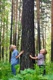 Children hugging tree Royalty Free Stock Photography