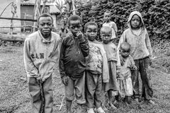 African Children. Children of Ilkidinga, a Waarusha Maasai village on the slopes of Mount Meru in Arusha, Tanzania Royalty Free Stock Images