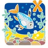 Children illustration of x-ray fish. Alphabet X. Children vector illustration of funny little x-ray fish in the sea, near the seabed. Alphabet X Stock Photography