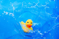 Children kaczki zabawkarska kropla w wodę Zdjęcia Stock