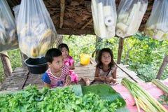 Children Karen offering fresh vegetable. TAK THAILAND - NOV1 : Children Karen hill tribe offering fresh vegetables collected from wild into bamboo shack beside Stock Images