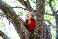 Children kid girl playing climbing to a tree in a park royalty free stock photo