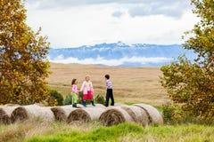 Children Fun Grass Bales Farm Royalty Free Stock Image