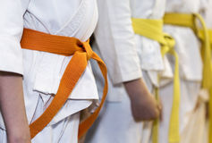 Children in kimono sitanding in a line on martial arts class. Children with colored belts in kimono sitanding in a line on martial arts class. Selective focus Royalty Free Stock Photo