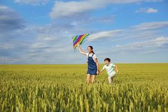 Children with a kite run across the wheat field in the summer. C royalty free stock images