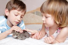 Children with kitten at home Royalty Free Stock Photo
