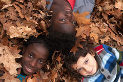 Children and leafs Stock Photography