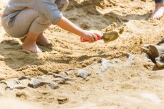 Children are learning dinosaur remains stock photos