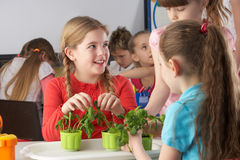 Children learning about plants in school class. Having fun stock photography