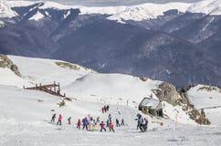 Children learning to ski. In Sinaia, Bucegi Mountains, Romania Stock Photography