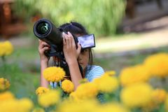 Children learning to use dslr camera with flower in the garden Royalty Free Stock Image