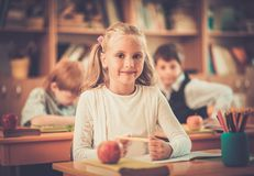 Children during lesson in school Royalty Free Stock Image