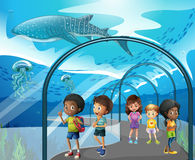 Children looking at fish in aquarium Royalty Free Stock Photo