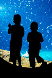 Children looking through an underwater viewing window Royalty Free Stock Photos