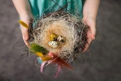 Children make a nest for birds, nest for birds. Children make a nest for birds, bird eggs royalty free stock images