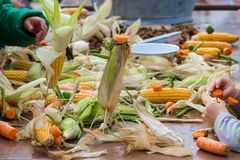 Children making puppets from corns and carrots during an agricultural festival Stock Photo
