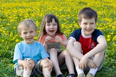 Children on the meadow royalty free stock photo