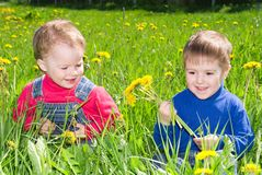 Children on meadow dandelion . Stock Photo