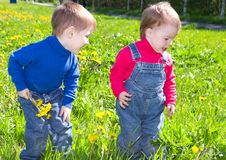 Children on meadow dandelion . Royalty Free Stock Photography